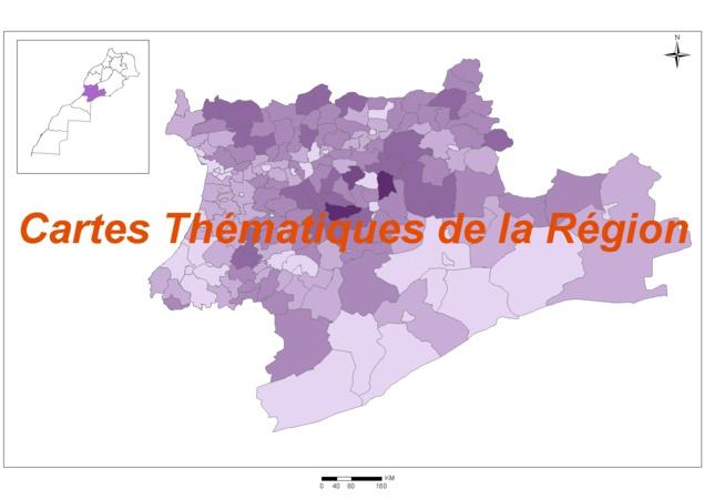 Cartes thématiques de la région : Emploi