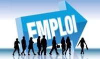 Principaux résultats relatifs aux nouvelles thématiques couvertes par l'enquête nationale sur l'emploi