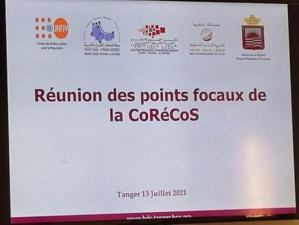 Base de données statistiques de Tanger (plan de renforcement des capacités des points focaux des partenaires régionaux)
